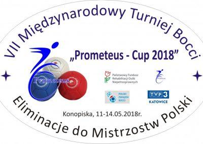 Poznańska Boccia w Konopiskach Boccia 7 - Start Poznań